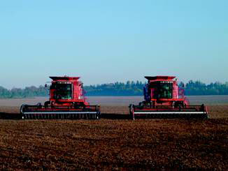 Figure 3. Two combines harvesting in a field