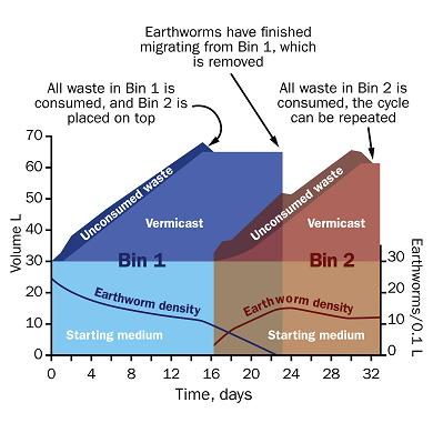 Figure 5 is a graph showing how a two bin vermicasting system for your household organic wastes works over a typical monthly period. The graph shows volume of wastes in Litres, both consumed and unconsumed by the earthworms on the y-axis to the left, time in days on the x-axis on the bottom, and density of earthworms in worms per 0.1 Litre of wastes on the alternative y-axis to the right. Bin 1 fills up over time with worm casts and consumed wastes, then around Day 15 of the month, Bin 2 is added on top of Bin 1 with the worms burrowing into Bin 1 from the bottom as they search for new food.