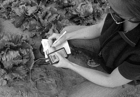 In a lettuce field an irrigator is using a digital hand-held reader to take soil moisture readings from a buried electrical resistance block. The irrigator has connected reader to the wires from electrical resistance block which protrude from soil. The irrigator is recording the reading on a sheet of graph paper.