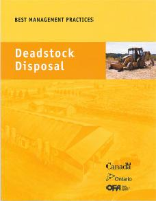 BMP Cover - Deadstock Disposal