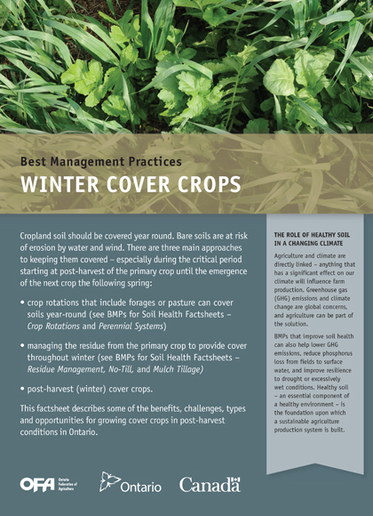 Winter Cover Crops