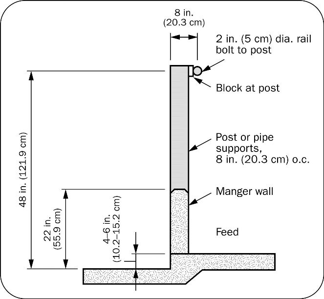 Figure 4: diagram of a post-and-rail feed bunk showing the height of the manger wall and size of supporting posts.